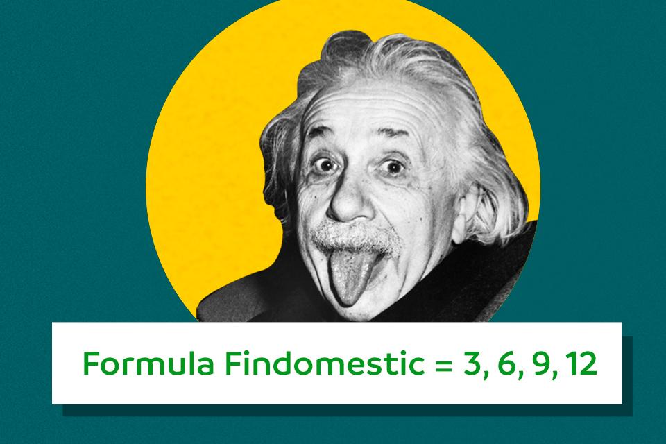 formula Findomestic